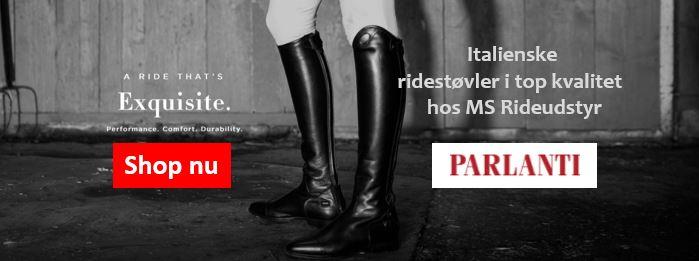 Ms Rideudstyr Parlanti